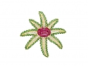 Tiffany & Co. 'Fireworks' Rubellite and Tsavorite Brooch in 18K Gold