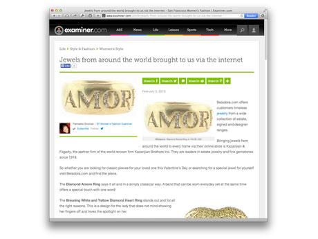 Examiner.com — February 2010